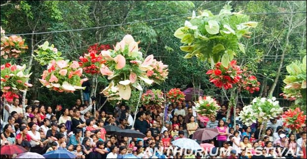 Anthurium festival of Mizoram is celebrated to promote tourism in the state.
