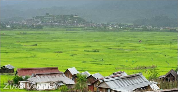 Ziro Valley is a small village in Arunachal Pradesh