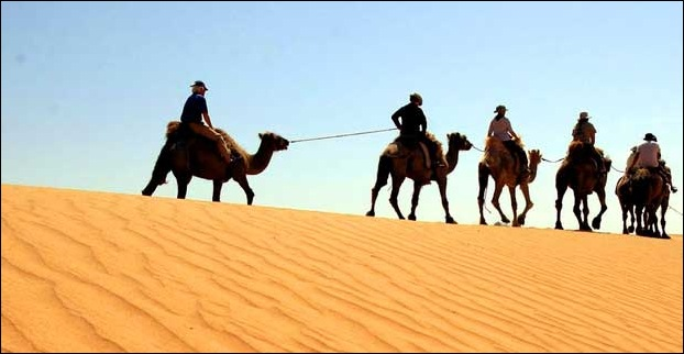 Camel Safari Tours Are Popular in Cities of Rajasthan