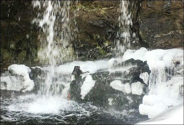 Frozen Chadwick Falls in Shimla after snowfall