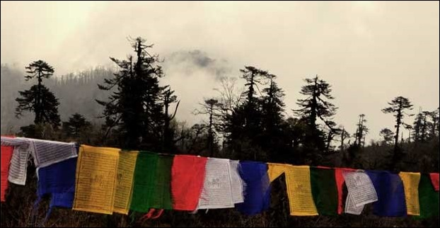 colourful_flags_sikkim_darj