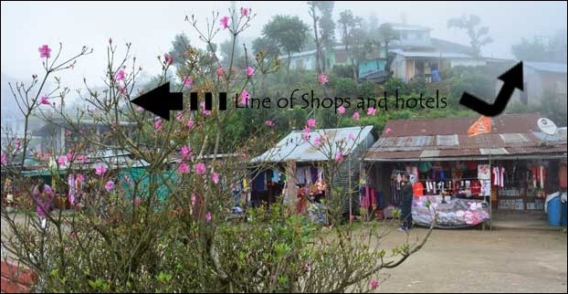 Infront of Mirik lake there are some hotels to stay and shops to buy local stuff