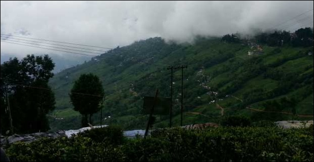 A view of the mountains from Tea Garden